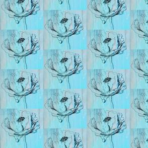 poppy sketch aqua