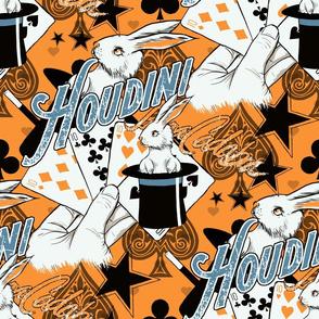 Houdini Magic Show