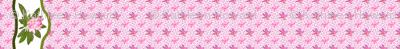 plumeria_2_border_9x72_horizontal
