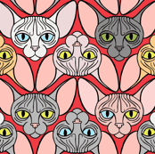 Sphynx Cat Chevron Red Background