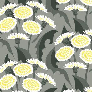 Dandelions on rich grey