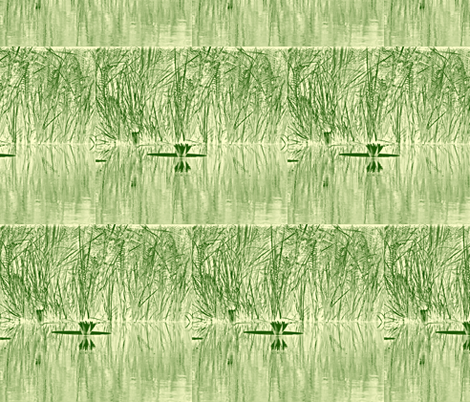 African Water Lily  fabric by papertrips on Spoonflower - custom fabric