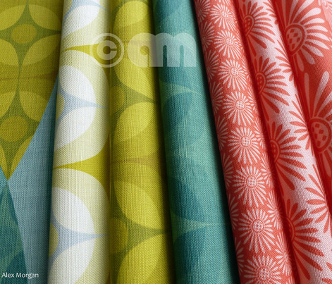 Rcoral_green_comment_410717_preview
