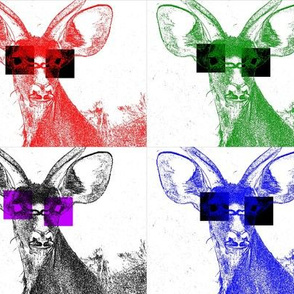 Kudus with Sunglasses