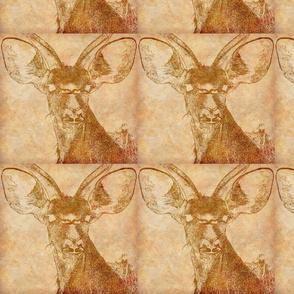 Kudu Ghost