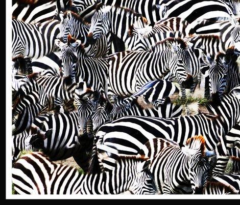 New_zebra_shop_preview