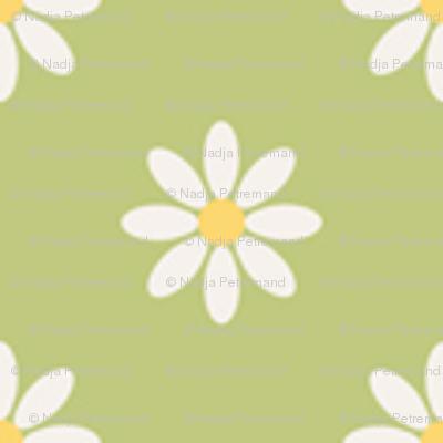 marguerite_fond_vert_S