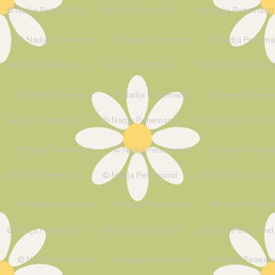 marguerite_fond_vert_M
