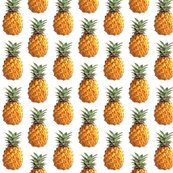 Rrr2760290_rrrpineapple_shop_thumb