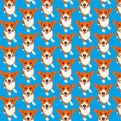 Corgi3_shop_thumb
