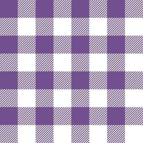 Gingham PurPle One
