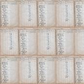 2014-VintageScan