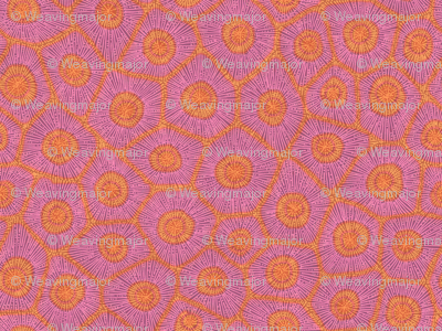 coral pattern in magenta and orange