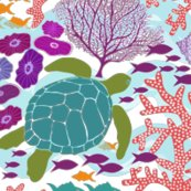 Reef_more_detail-1_shop_thumb