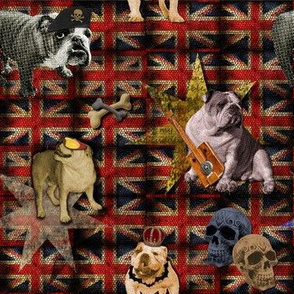English Bulldog goes British