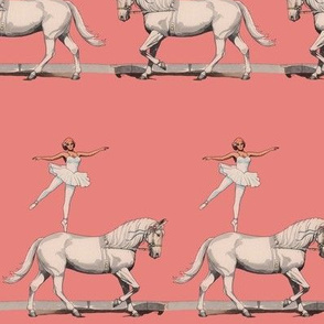 ballerinas and ponies