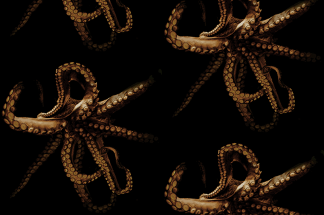 Out of the Depths, Octopus in Sepia fabric by willowlanetextiles on Spoonflower - custom fabric