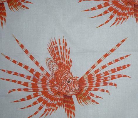 Lionfish White