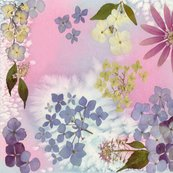 Rrhydrangea_and_pink_shop_thumb