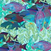 Rrrrrrrr13-test-parrotfish-4-compile_shop_thumb