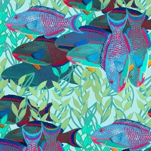 A pack of parrotfish by Su_G