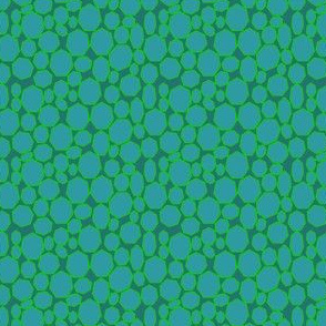 Sea Turtle Skin