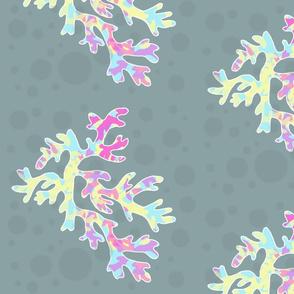 Coral Bubbles