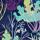 Rcoralreef_shop_thumb