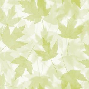 Maple Layers - light green