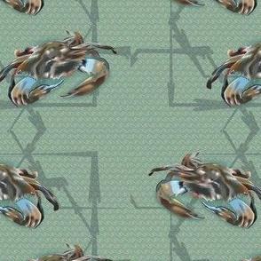 MD-Blue-Crab