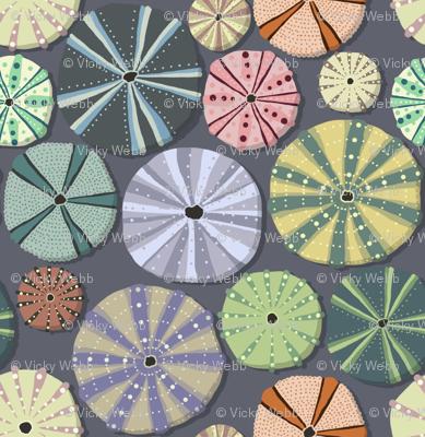 Sea Urchins Simple