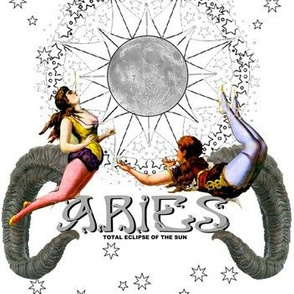 Aries March 21st - April 19th
