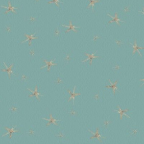 SecretStars