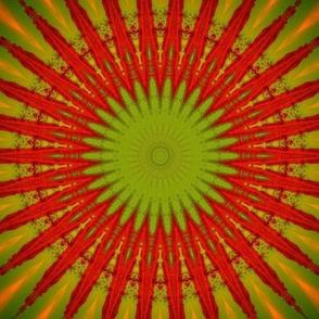 Patchwork Red Starburst