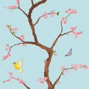 Jenny_cherry_blossoms_in_light_blue_shop_thumb