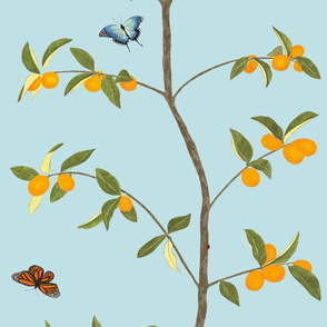 Jenny kumquat on light blue