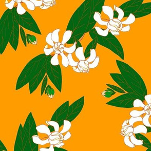 White Gardenia on Orange