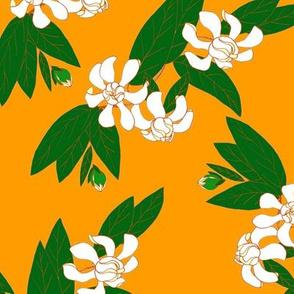 White Gardenia on Orange