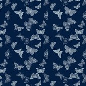 Rbutterfly-fabric_shop_thumb