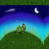 Turtlehill-12x12_shop_thumb