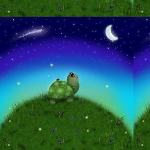 Turtlehill-12x12