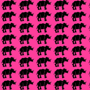 New Black Rhino on Hot Pink