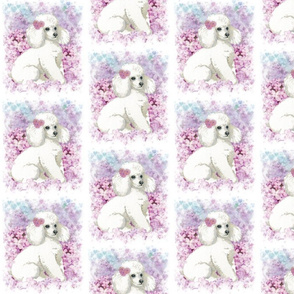 White Poodle with Lilacs
