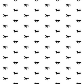 Black Pony White Wide Spaced