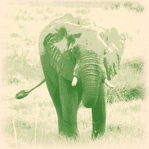 Winsome Elephant