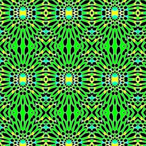 lime green daisy