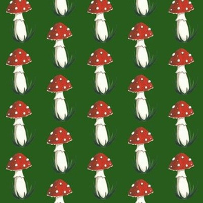 Amanita on Dark green