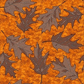 oak_leaves_on_orange_leaf_litter