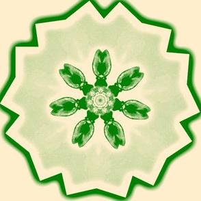 Green Tulipstar on Cream