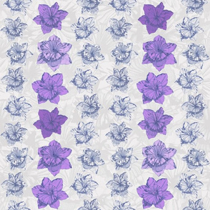 Daffodil Stripe (Purple)